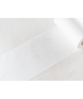日本進口和紙膠帶 mt 2017 CASA Lining 系列 - 白_100mm ( MTCALI02 )